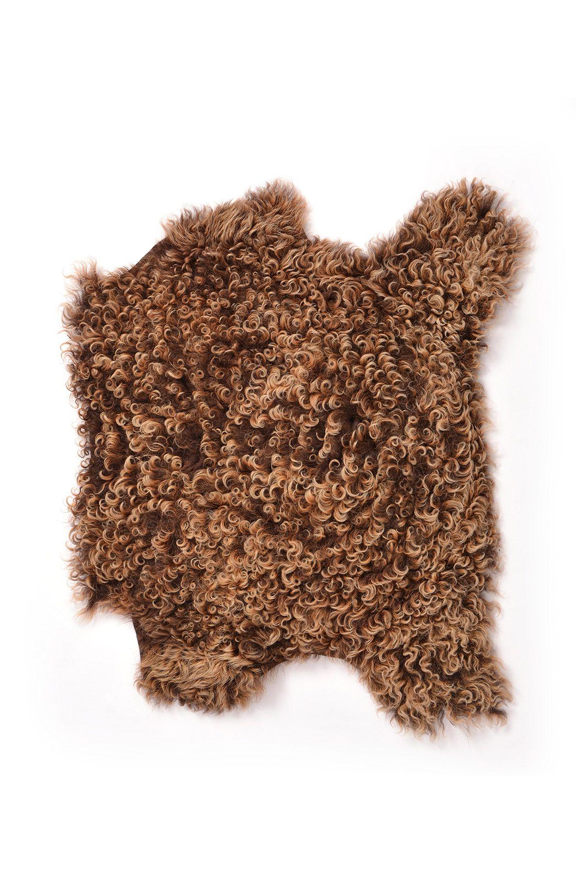 Erdogan Deri Curly Decorative Sheepskin Rug Brown